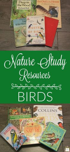 MASSIVE COLLECTION of all the resources you'll need to Learn about BIrds in your Homeschool! Nature Study, Unit Study or just for fun, you need this list of living books, reference books, games, CDs, and more!
