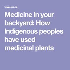 Medicine in your backyard: How Indigenous peoples have used medicinal plants