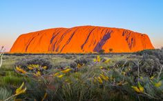 The Red Center – Ayers Rock