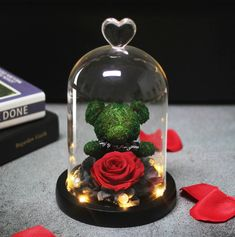 Bear Valentines, Valentine Day Gifts, Peluche Stitch, Beauty And Beast Rose, Rose Dome, Rose Gift, Mothers Day Presents, Romantic Roses, Led Licht