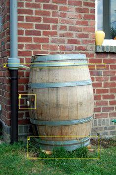 Collect rain water in a wine barrel.