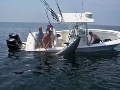 How to catch a giant bluefin tuna from Cape Hatteras NC from a small boat on a budget.