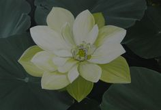 Summer Tranquillity Online Gallery, Plants, Summer, Painting, Art, Craft Art, Paintings, Kunst, Plant