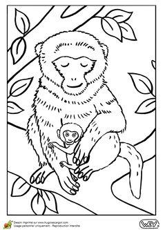 cette maman macaque pose sur un arbre avec son bb coloriage pour enfants - Coloriage Decoration Dune Chambre De Bebe