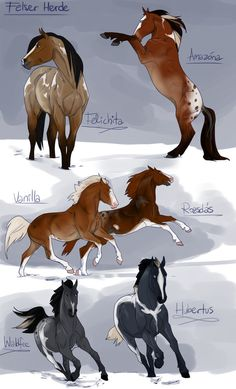 Obertaurer Imports from on DeviantArt - Obertaurer Imports 2013 . - Obertaurer Imports by on DeviantArt – Obertaurer Imports by – # - Animal Sketches, Cute Animal Drawings, Cute Drawings, Creature Drawings, Horse Drawings, Fantasy Creatures, Mythical Creatures, Arte Equina, Horse Animation