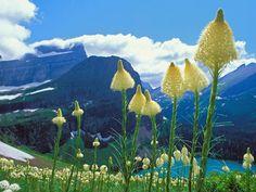 fotos-paisajes-naturaleza