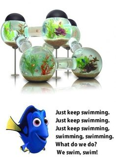 Imagen de fish bowl, dori, finding nemo and pecera