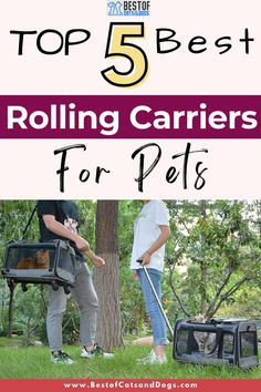 Pet Rolling Carrier Makes It Easy For Pet Owners To Travel With Their Pets Safely And Comfortably. Check Out Our TOP 5 Rolling Carriers For Pets Picks. #PetRollingCarrier #RollingPetCarrier #WheeledPetCarrier #RollingDogCarriers Dog Carrier, Pet Carriers, Dog Owners, Rolls, Pets, Buns, Bread Rolls, Animals And Pets
