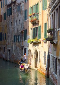 Stop Searching For Things To Do In Venice! - Journalist On The Run