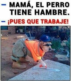 61 Ideas Memes Funny Spanish Laughing For 2019 Funny Photos Of People, Funny People, Funny Pictures, Funny Spanish Memes, Spanish Humor, Mexican Memes, Mexican Funny, New Memes, Relationship Memes