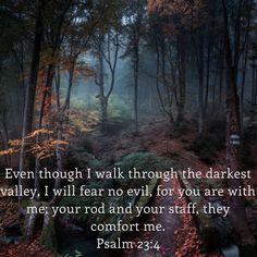 Best Bible Verses, Scriptures, Psalm 23, The Darkest, Qoutes, Knowledge, Wisdom, Lettering, My Love