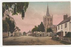 Sidbury Village 1913. Some of my ancestors were from Sidbury - if you're researching the surnames Willsman, Wellsman or Welsman, do get in touch! esjones <at> btopenworld.com