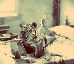 woman, jungle cat
