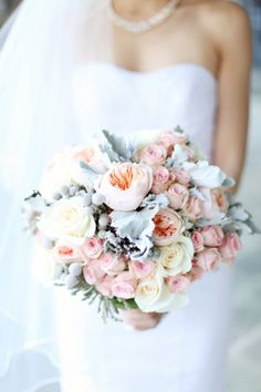 Bridesmaid Bouquet: Soft bouquet of roses and dusty miller. Love the white roses, peach Juliet garden/cabbage roses, dusty miller/silver sage, and silver brunia (not a huge fan of the pink spray roses) Gorgeous!