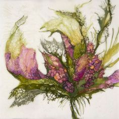 Botanical Study 10 by Alicia Tormey