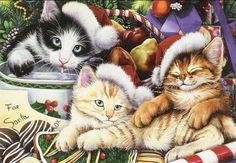Christmas cats by Jenny Newland