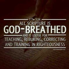 Scriptures are the instructions for Life.