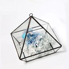 Modern Artistic Clear Glass Geometric Terrarium Five-surfaces Diamond Succulent Fern Moss Terrarium with Loop Hanging flowerpots