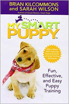 """Read """"My Smart Puppy (TM) Fun, Effective, and Easy Puppy Training"""" by Brian Kilcommons available from Rakuten Kobo. America's most beloved dog trainers are back with brand-new training techniques in the definitive guide to raising a hap. Dog Training Books, Dog Training Classes, Crate Training, Training Your Puppy, Dog Training Tips, Training Schedule, Training Pads, Leash Training, Agility Training"""