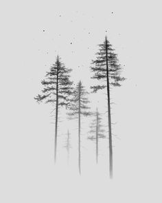 Look Up Clear iPhone Case by amocci Tree Silhouette Tattoo, Pine Tree Silhouette, Tree Line Tattoo, Pine Tree Tattoo, Tree Tattoos, Black And White Tree, Tree Sketches, Tree Tattoo Designs, Nature Tattoos