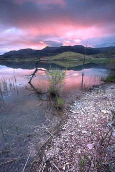 Painted Hills Lake, purple-tinted lake is near the Painted Hills of   Wheeler  County , Ore. the mauve shades come from iron oxides and mineral particles that trickled down into the water from the hills