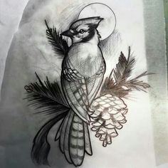 Blue jay sketch by matt rictus tattoo ideas blue jay tattoo, Blue Jay Tattoo, Skull Tattoo Design, Tattoo Designs, Sake Tattoo, Tattoo Bird, Cardinal Tattoos, Neue Tattoos, Sleeve Tattoos For Women, Neo Traditional Tattoo