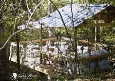 Home tour (+ a treehouse!) from Cedar Hill Ranch #summershowcase