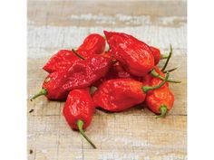 Bhut Jolokia or GhPepper | Baker Creek Heirloom Seed Co
