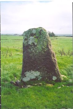 """""""King Daithi Stone  This marks the grave of the former King and High King and nephew of Niall of the Nine Hostages. Daithi (405AD – 426AD) was the last Pagan King of Ireland."""""""