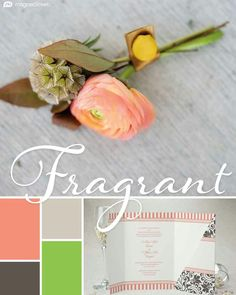 """These are your fall wedding color trends (pt 5)... The """"Fragrant"""" palette: Coral, Sugar, Custom Green, and Slate. According to @MagnetStreetWed, """"...this bright mix of coral and green is elegant, gorgeous, and romantic! Incorporating a touch of beige and sleek grey adds a clean and crisp touch, making it perfect for modern or vintage wedding day affairs alike."""" (Source: MagnetStreet.com)"""
