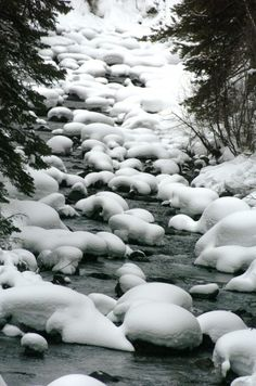 Snow covers the rocks on the North Fork of the Shoshone River in Wyoming even though spring is less than a week away.        Read more: http://billingsgazette.com/news/state-and-regional/wyoming/winter-river/image_4efaa2d9-36eb-5e60-812b-af760353bee6.html#ixzz1pI2zDOoG