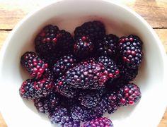 Forest Blackberrries