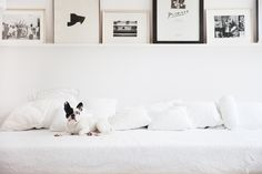 Zuhause bei Lena Terlutter_Journelles_31