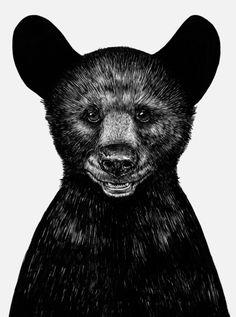 Little Bear  by Sebastian Gomez De La Torre