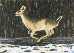 "Winter Deer, 2012, Carborundum Aquatint, 22 1/2"" x 28"""