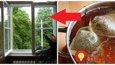 Perfektný trik na umývanie okien, pred Veľkou nocou určite poteší! Cleaning Hacks, Homemade, Ethnic Recipes, Diy, Food, Home Decor, Chemistry, Decoration Home, Home Made