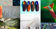 Nézze meg a Shutterstock legújabb infografikáján, milyen lesz a világ formatervezési/dizájn irányvonala.