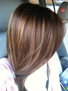 Image result for straight dark brown hair with highlights shoulder length