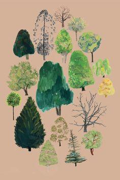 Rosie Gainsborough, Woods