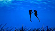 Awwww......When seahorses find a mate, they wrap their tails around each other so the tide doesn't drift them apart. They have that one mate for the rest of their lives. When the mate dies, they do too.