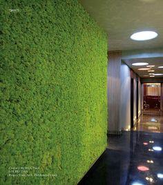 Benetti MOSS grass
