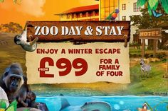 Chessington Christmas Stay with Zoo & SEA LIFE Entry for 4