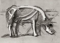 la vache de Mondrian : étude anatomique (photographie : Ed Lavino)
