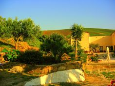 Agriturismo Tarantola, Sicily. The agriturismo consists of two main groups of buildings - in the first, completely renewed, there's the restaurant and the guesthouses, and in the second there's the wine cellar, the ancient bakery, and the other apartments http://www.organicholidays.com/at/2592.htm