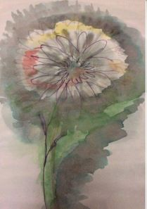 marraskuun kukka
