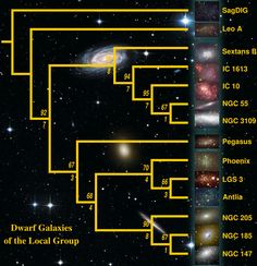 Dwarf Galaxies of the Local Group