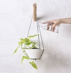 16 Gift Ideas For Those Who Love Little Gardens