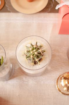 Looking for some inspiration for your next party? Check out our tablescape featuring our lovely Cactus Party Ideas. This party is fun and easy to recreate. Diy Birthday, Birthday Parties, Party Themes, Party Ideas, Diy Wedding Projects, Oriental Trading, Cacti And Succulents, Party Planning, Make It Simple