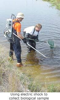 fish shocking to collect biological samples to study water quality in most populated watersheds in the US.