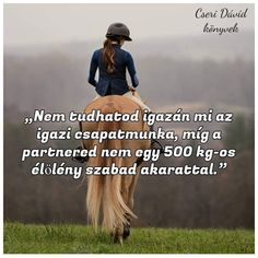 Equestrian Quotes, Most Beautiful Horses, Horse Quotes, Horse Barns, Horse Riding, My Life, Pictures, Frases, Animales